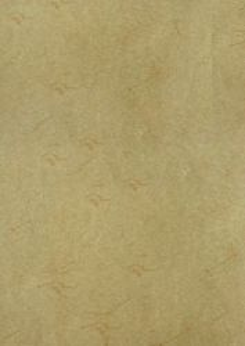 ART VELLUM PAPER - ELEPHANT хартия 110гр А4  / 10 листа CHAMOIS