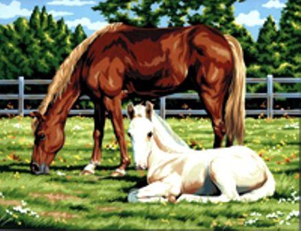 PAINTING by NUMBERS ,USA - Рисуване по номера на платно 350 X 280mm * PCL2